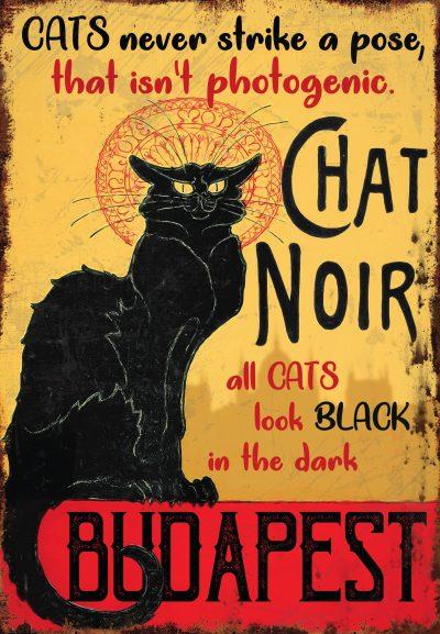 Fekete macska Budapest